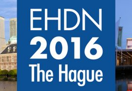 EHDN 2016 The Hague IRBM