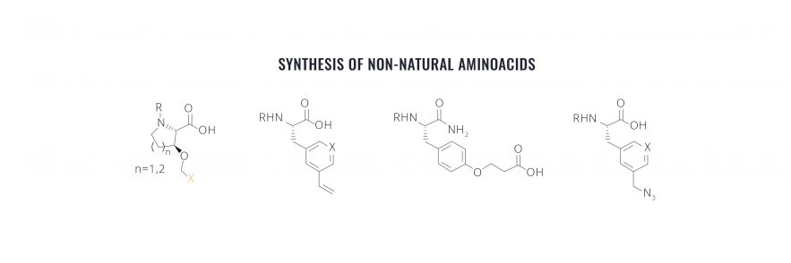Peptide Discovery - Macrocyclic drugs: Synthesis of NonNatural Amino Acids
