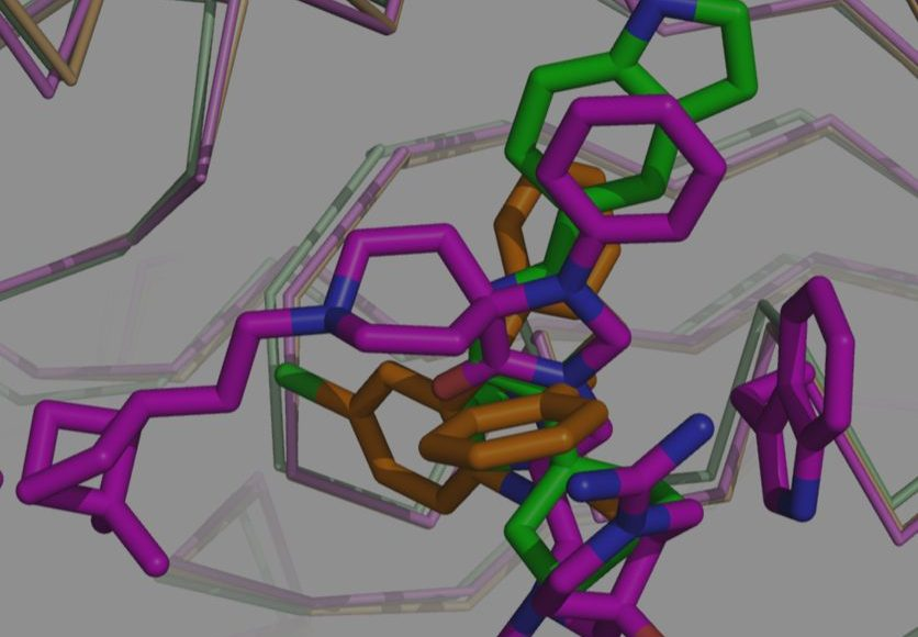 IRBM & University Of Rome Publishes In PLOS On New Chemotype With Antiparasitic Activity For Treating Sleeping Sickness