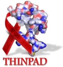 Targeting the HIV-1 Nucleocapsid Protein to fight Antiretroviral Drug Resistance