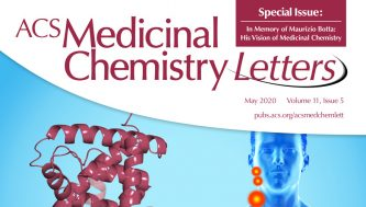 In Memory Of Maurizio Botta: His Vision Of Medicinal Chemistry