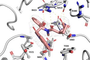 Combined Peptide and Small-Molecule Approach Toward Nonacidic THIQ Inhibitors of the KEAP1/NRF2 Interaction